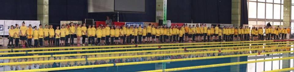 TFSE Úszás: edzőtáborok és versenyek